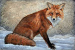 Fox in Snow, acrylic on canvas
