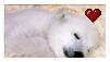 Stamp: Polar Bear by Shendijiro