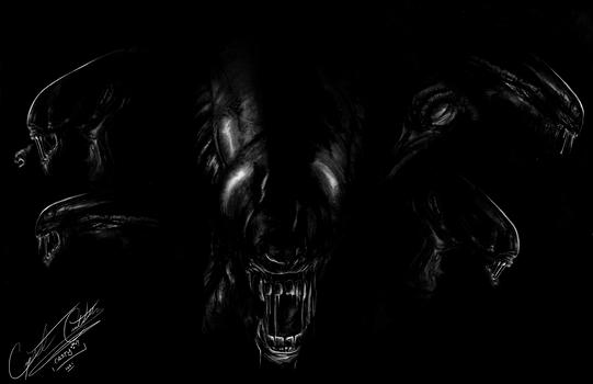 Xenomorph charcoal art.