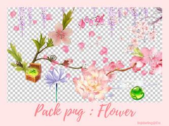 [1/1/2017] Pack PNG : flowers by linjidarling