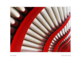 red white by luag