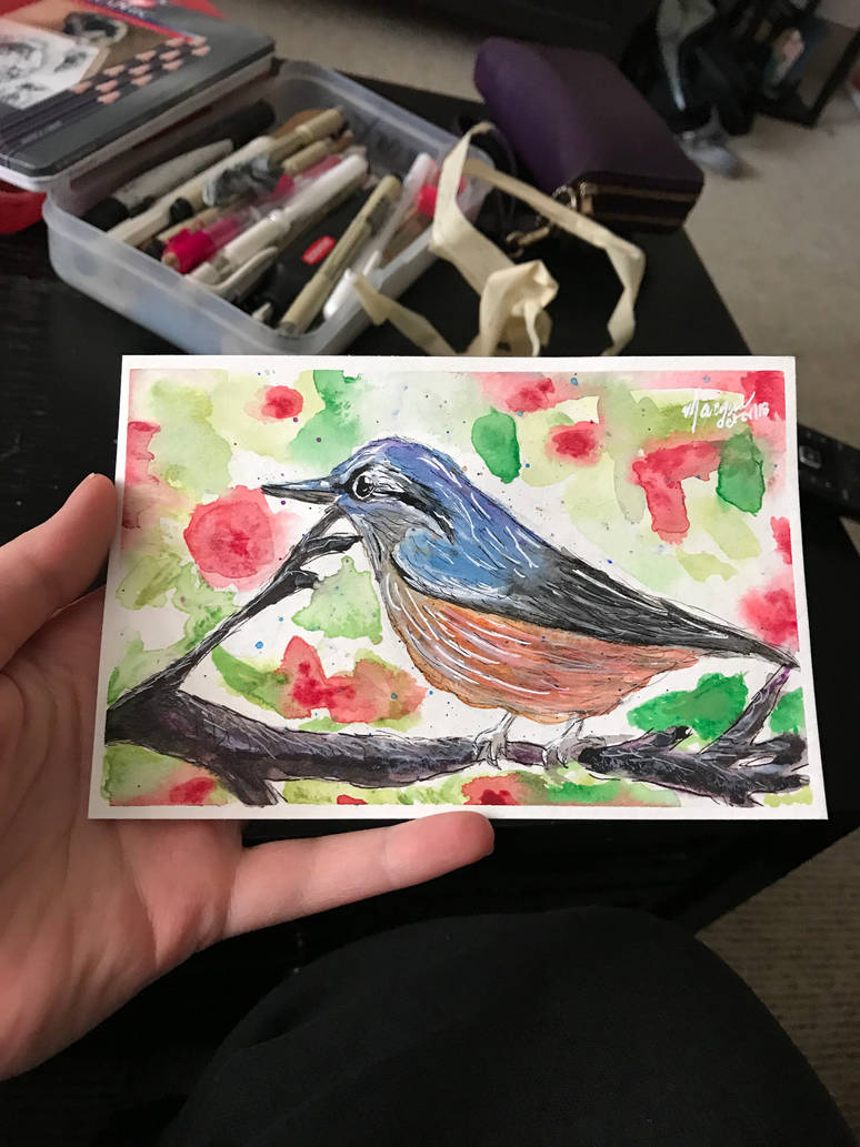 Watercolour Bird Postcard by marcieness