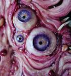 po-tay-to eye close up