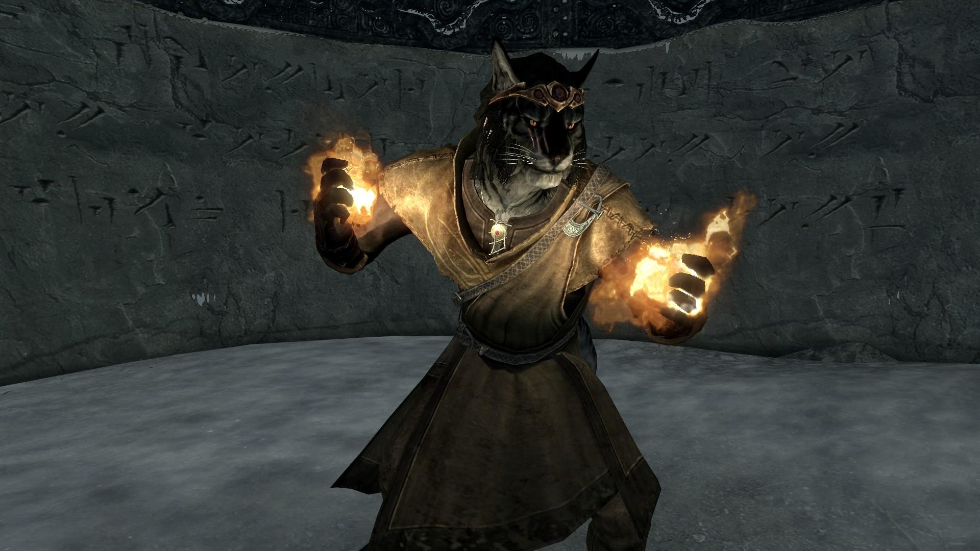 Elder Scrolls Black Cat