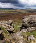Dartmoor Rocks!
