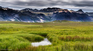 Verdant green by LawrenceCornellPhoto
