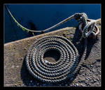 Neatly coiled by LawrenceCornellPhoto