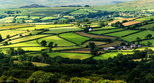 Green fields cover the land by LawrenceCornellPhoto