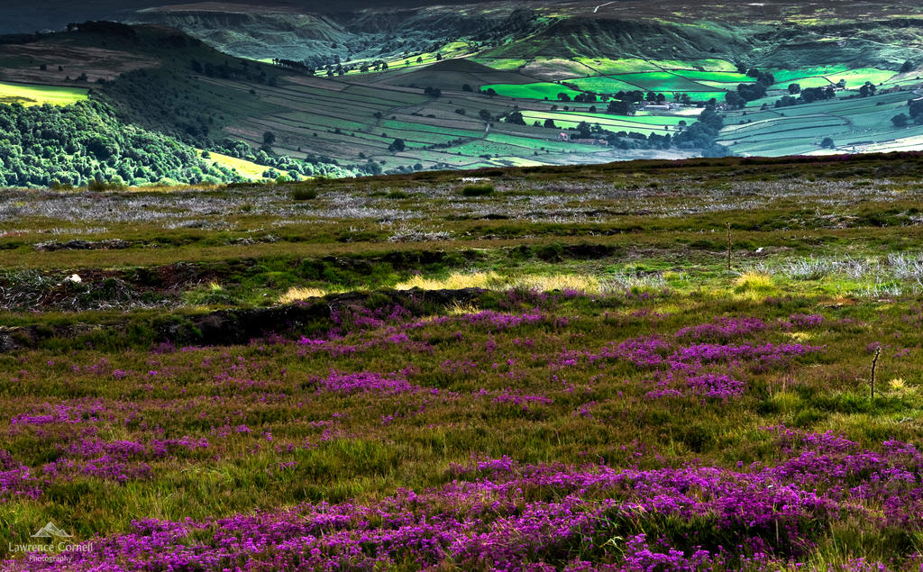 All the colours of the moors. by LordLJCornellPhotos