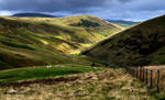 The soft, rolling hills. by LawrenceCornellPhoto