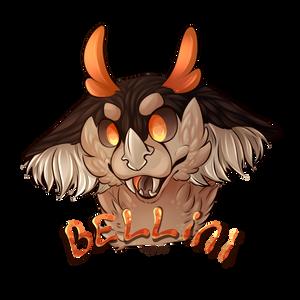 Meet Bellini, The Weird Ol' Creature!