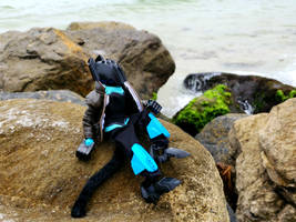 Beach Kat