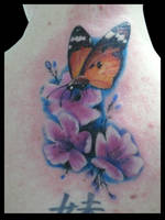 cherry blossoms butterfly by michaelbrito