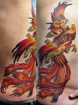 phoenix on ribs