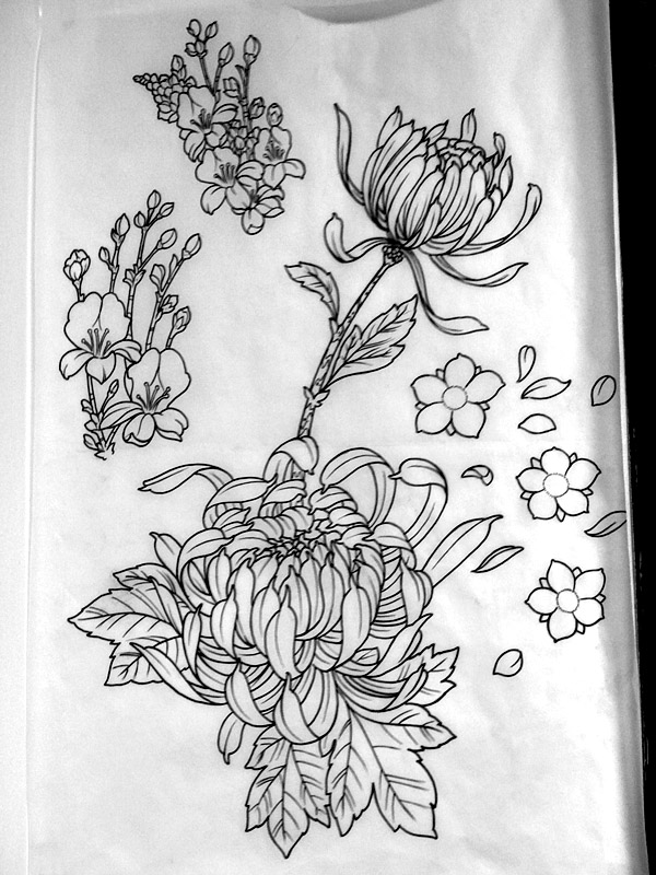 Japanese Flower Line Drawing : Chrysanthemum line art inspiracion pinterest