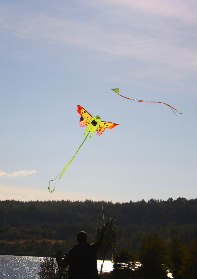 Kites by LoveForDetails