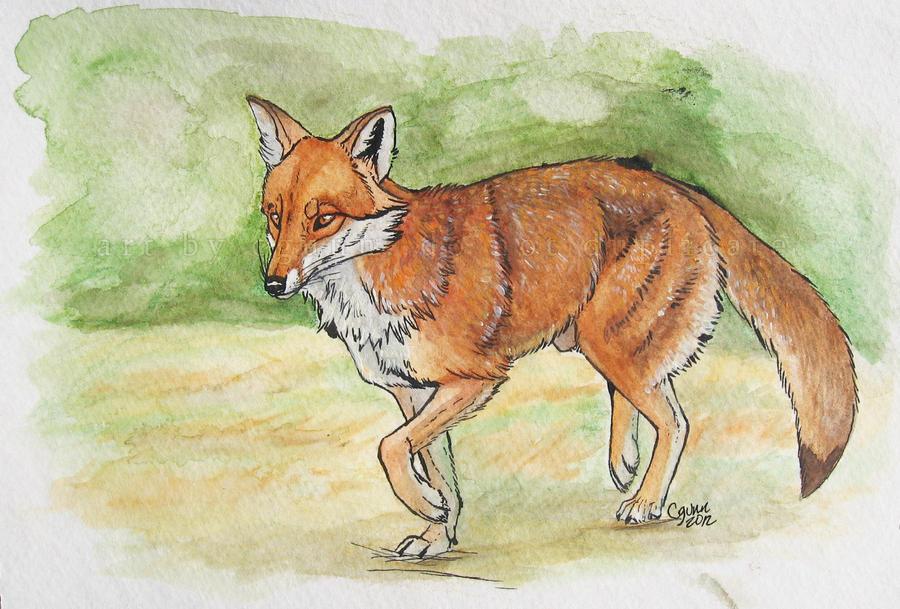 Fox Trot by InstantCoyote