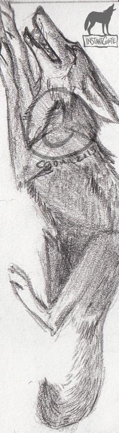 Coyote Bookmark by InstantCoyote