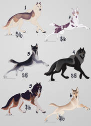 All Sold - Adopt Batch 2 - Spring 2019 by InstantCoyote