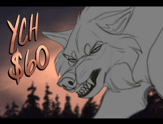 YCH $60 - Tired