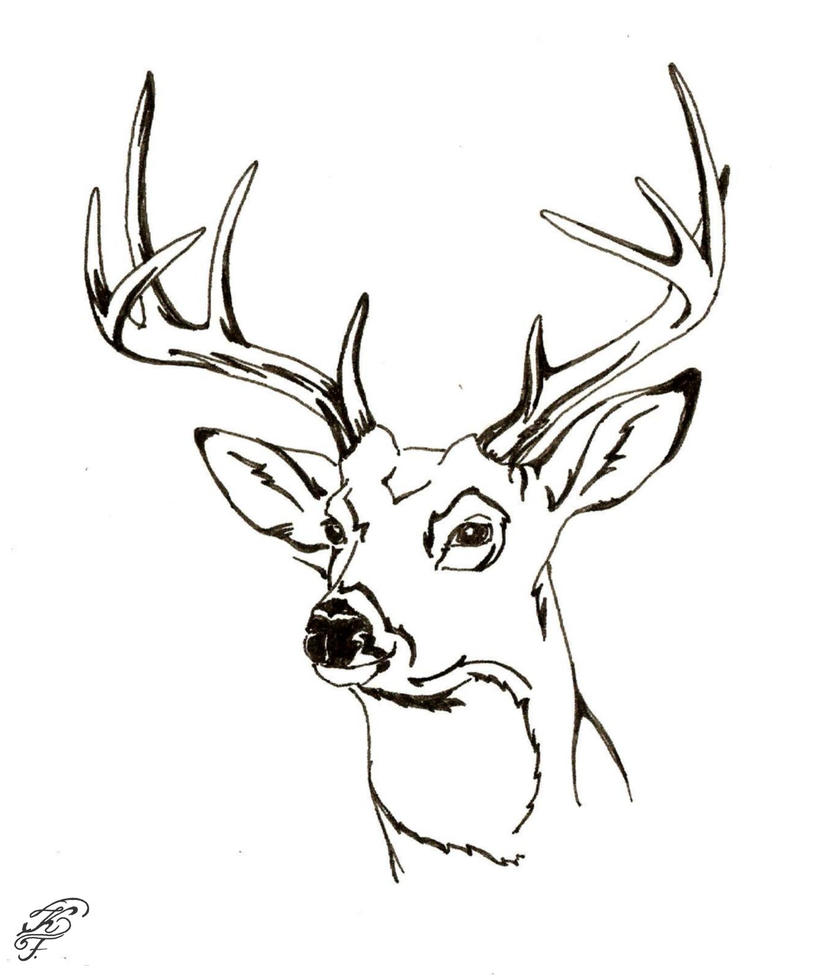 browning deer head coloring page wwwimgkidcom the