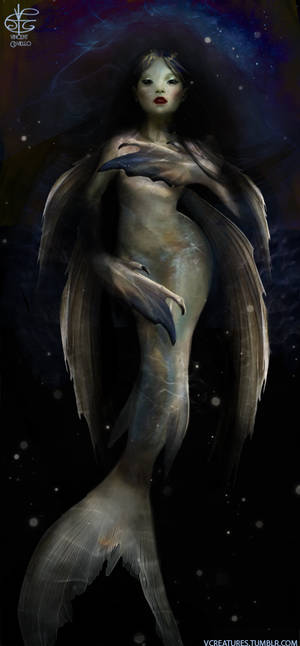 Mermaid Promise