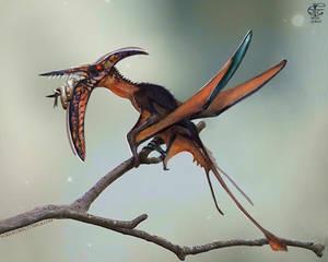 'Rhamphorhynchus'