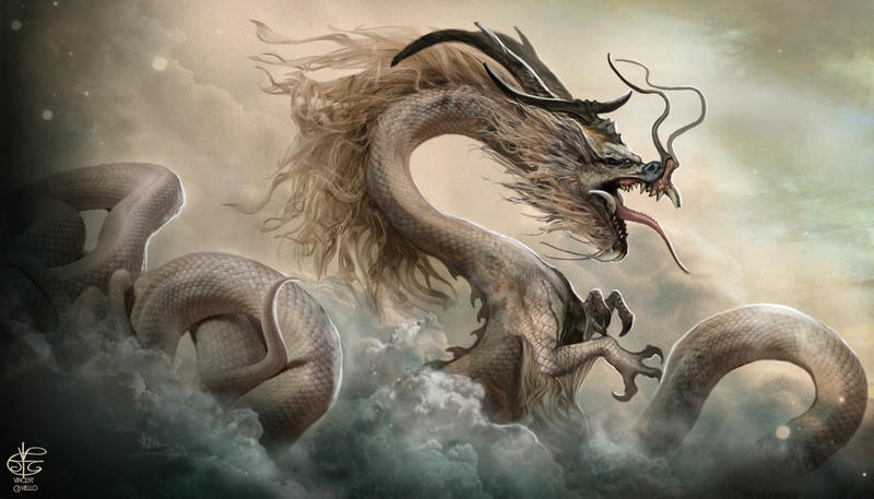 Chinese Dragon by Vincent-Covielloart on DeviantArt