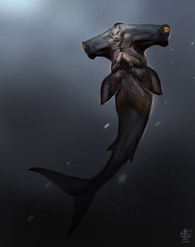 Hammerhead Mermaid