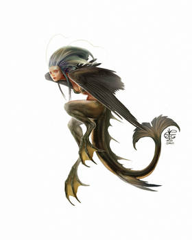 Mermay Siren