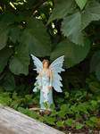 Blue Fairy in the garden