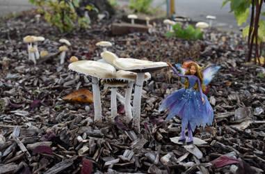 Fairy in a mushroom garden 2 by FeynaSkydancer