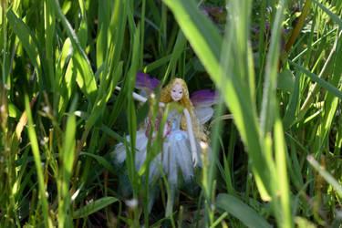 Fairy in the Grass 2 by FeynaSkydancer