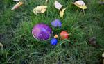 Just some ordinary 'mushrooms'... by FeynaSkydancer