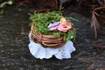 A little fairy nest by FeynaSkydancer