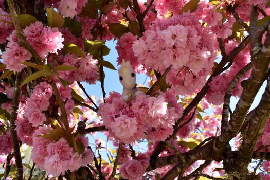 Little Lost Unicorn: In the Flowering Tree 1