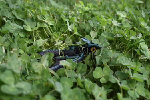Slightly hidden in the clovers