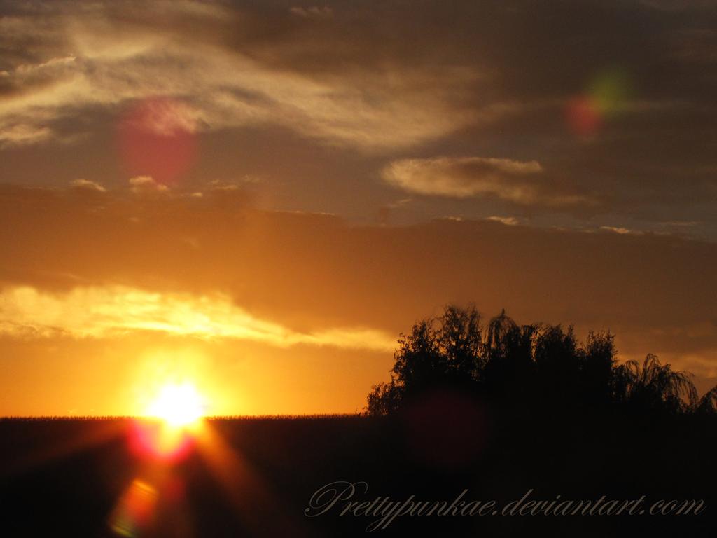 Morning Burst III by prettypunkae