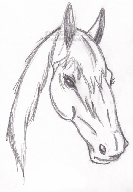 how to draw a really cute horse