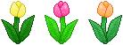 Tulip Trio Divider - F2U! by Drache-Lehre