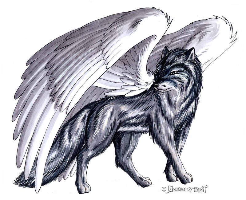 big winged wolf by Footroya on DeviantArt