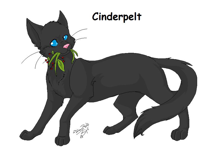 Warriors Cats Cinderpelt Cinderpelt Related Key...