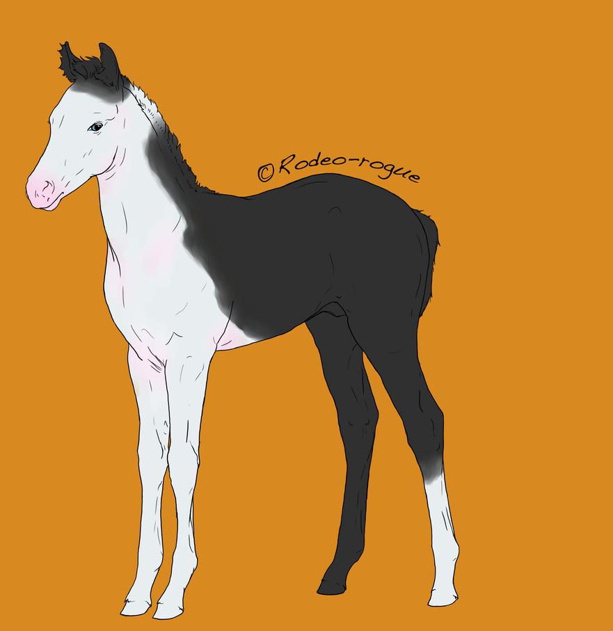 foal by WinnyDaPoo