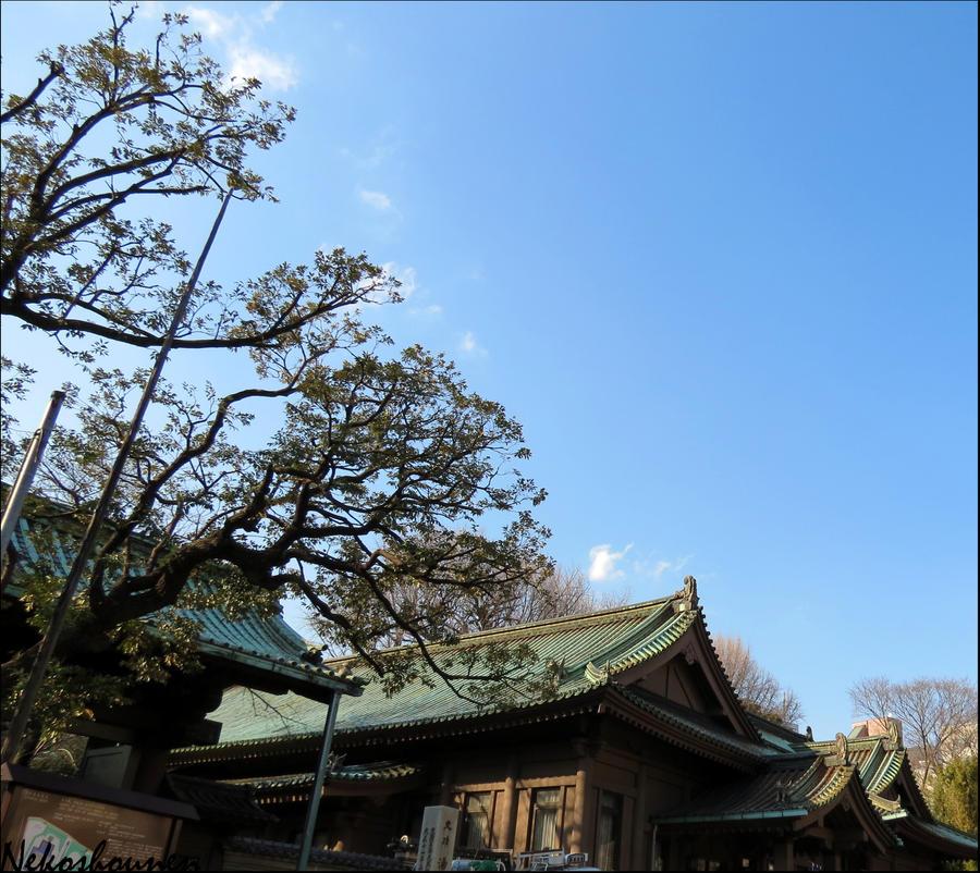 Blue skies by nekoshounen
