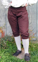 18th Century Breeches - Front by Goldenspring