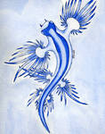 Blue Glaucus by SPIKE295