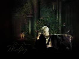 Mr. Draco Malfoy