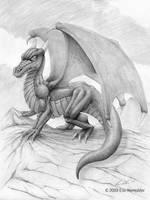 Dragon on Rocks by EricKemphfer