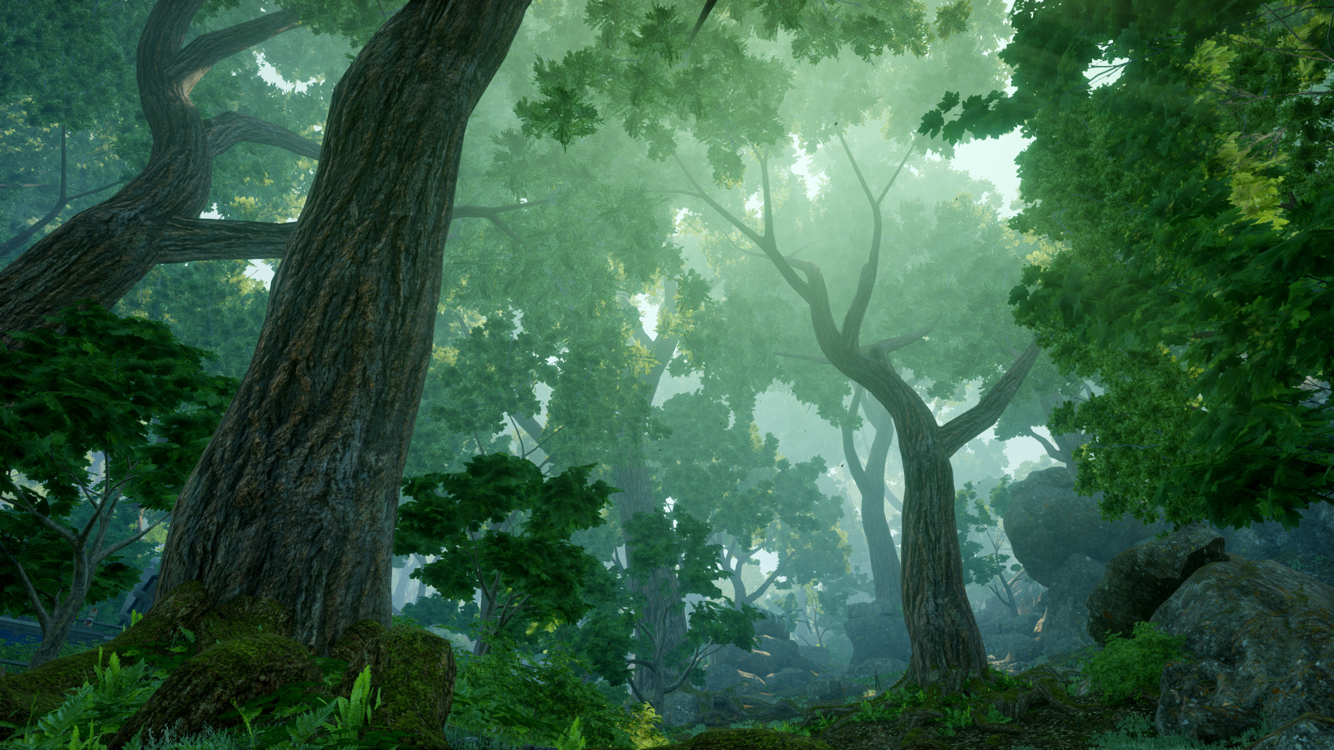 Dai Forest Landscape By Ndc880117 On Deviantart