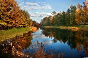 crazy autumn by fotoinsan